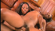 Magnificent caramel lesbians hook up on the couch and taste each other's pussies