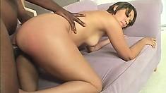 Beautiful Latina starlet enjoys working a monumental black rod