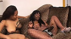 Chubby as all fuck black bitch gets pounded by her sista's toy