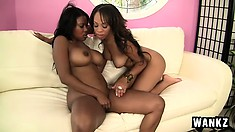 Ebony bitches with lovely curves make each other moan loudly
