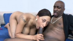 Big breasted ebony woman has a hung black dude satisfying her desires