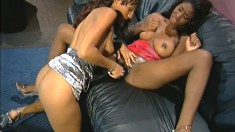 Skinny black girls treat each other to a good time on the couch
