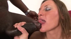 His bulging black pole is eager to pounce on her white pussy