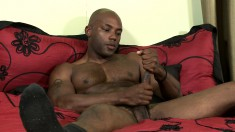 Black stallion caresses his muscled body and pleases his large prick