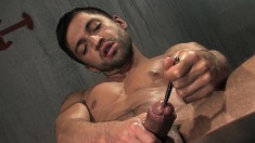 Ripped Hunk Enjoys Rubbing His Meat Stick And Sounding It Hard