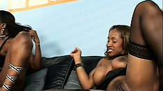 Sexy black girlfriends in stockings make each other moan and cum