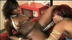 Thick ebony hos get their pussies wet with a double ended dong