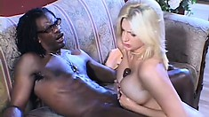 Stacked blonde Staci Thorn has a black stud drilling her holes with his huge dick