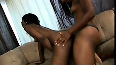 Gorgeous black bimbos make their slender bodies twitch on the couch