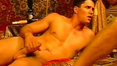 Three muscled guys suck each other's big cocks and then fuck hard