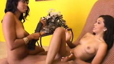 Ebony lesbians licking each other's pussies and enjoying pure pleasure