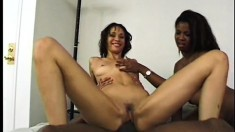 An enormous black cock has two dripping wet pussies to please